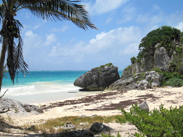 Tulum Beach: Digital Photograph by Christopher Spicer